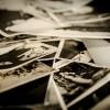 昔の写真や音楽で認知症の人とコミュニケーションがとれるiPadアプリ『GreyMatters』