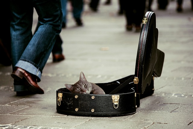 ギターケースの募金箱