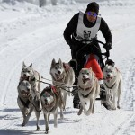 VRゴーグルをはずせば、よりリアルな犬ぞりツアーをバーチャル体験!?
